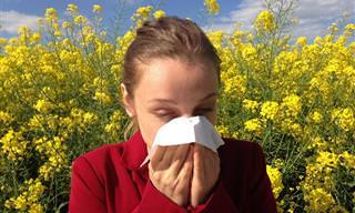 7 Datos Que No Sabías Sobre El Sistema Inmunológico