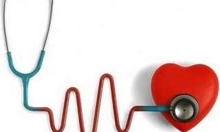 ¿Cómo Reducir Los Niveles De Colesterol?