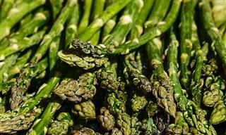 Es La Época Para Plantar Estos 6 Vegetales De Primavera