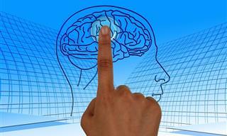 Consejos De Los Expertos Para Que Mejores La Memoria