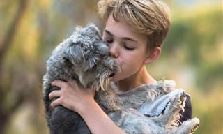 Cómo Nos Dicen Las Mascotas Que Nos Aman