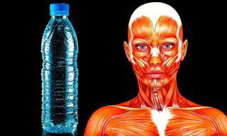 Esto Es Lo Que Sucederá Si Solo Bebes Agua Durante 20 Días