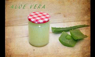 Cómo Preparar En Casa Gel De Aloe Vera Natural