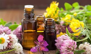 12 Aceites Esenciales Naturales Para El Alivio Del Dolor