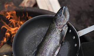 Estos Errores Al Cocinar Están Arruinando Tus Platos De Pescado