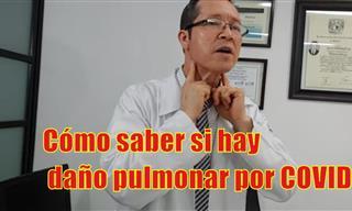 Los Principales Signos De Daño Pulmonar Ocasionados Por Covid-19