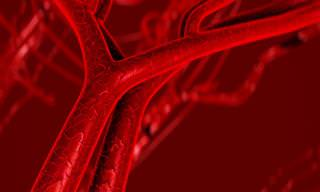 Estos 7 Síntomas Indican Arterias Bloqueadas