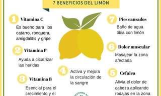 Los Beneficios De Las Frutas y Verduras