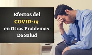 Efectos Del Covid-19 En Otras Áreas De La Salud
