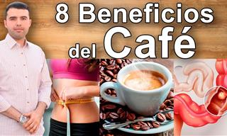 8 Propiedades Del Café Que Debes Conocer