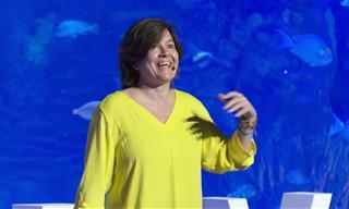 Charla De Ted Talk: Los Estigmas Sobre La Depresión
