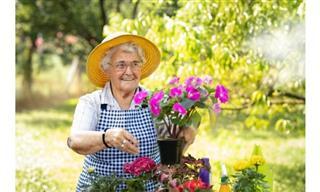 Demencia, Consejos Para Poner En Práctica En Casa