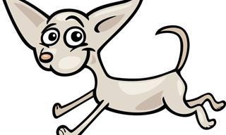 Chiste: Un Perro De Ataque Inusual