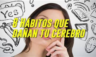Video: 8 Hábitos Que Pueden Dañar Tu Cerebro