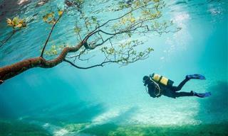 Este Lago Verde Que Se Convierte En Un Sitio Maravilloso