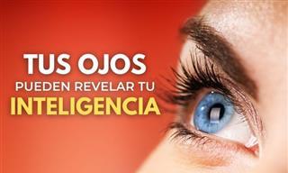 La Relación Entre Inteligencia y Tamaño De Pupilas
