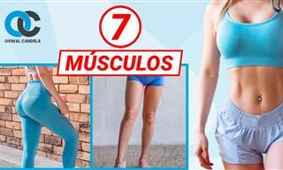 Los 7 Músculos Que Deben Entrenar Las Mujeres Para Una Máxima Estética