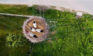Las Mejores Fotos Con Drones Del 2015