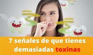 ¿Está Tu Cuerpo Inundado De Toxinas? 7 Síntomas Reveladores