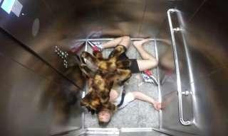 Divertidísima Broma: La Araña Del Terror