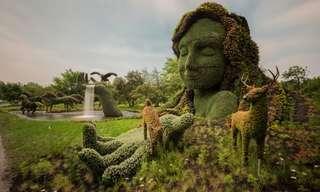 ¡Magníficas Obras De Arte Naturales!
