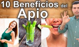 Conoce Los 10 Grandes Beneficios Que El Apio Tiene Para Tu Salud