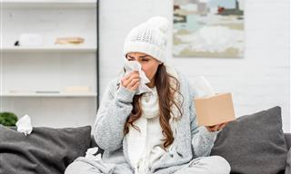 Principales Causas y Soluciones Para Las Alergias Invernales