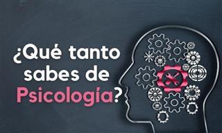 Test: ¿Qué Tanto Sabes Sobre Psicología Humana?