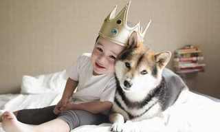 12 Efectos De Los Perros En Los Niños