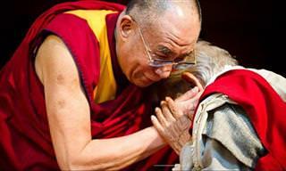 Conoce Los 13 Puntos Del Dalai Lama para Lograr Felicidad
