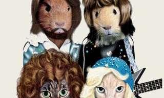 ¡Los Animales Ahora Son Celebridades!