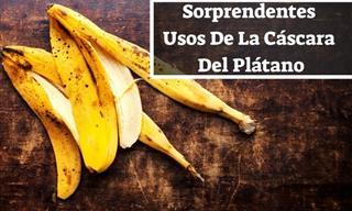 5 Usos Que Puedes Darle a La Cáscara De Banana Cada Día