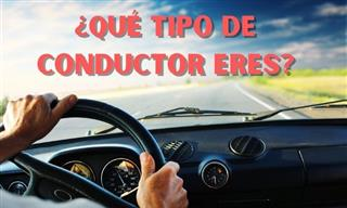 Test: ¿Qué Tipo De Conductor Eres?