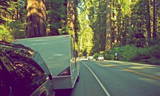 ¿Conducir Un Remolque Al Revés? Algo Que No Vemos Todos Los Días