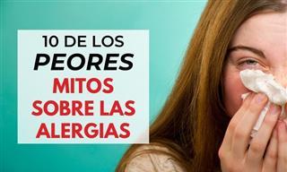 10 Mitos Sobre Alergias Que No Debes Creer