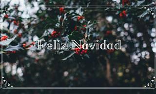 Que La Alegría, El Amor y La Paz Estén Contigo En Navidad
