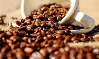 QUIZ: ¿Eres Un Auténtico Amante Del Café?