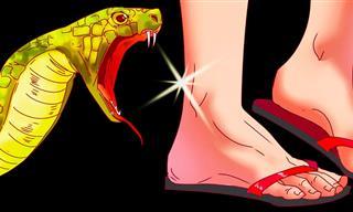 Esto Es Lo Que Ocurre Cuando Te Muerde Una Serpiente