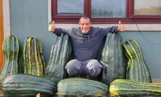 Estos Jardineros Tienen Verdaderas Cualidades Para Cultivar Verduras