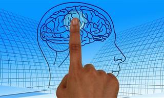 Comidas Que Reducen El Riesgo De Un Derrame Cerebral