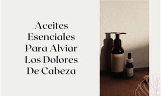 8 Aceites Esenciales Para Aliviar Los Dolores De Cabeza
