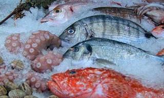 10 Razones Por Las Que Todos Debemos Consumir Pescado En Nuestra Dieta