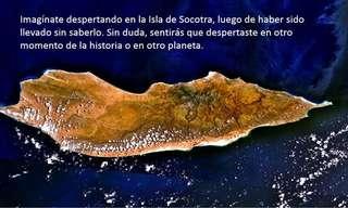 Socotra: El Lugar Más Raro del Mundo