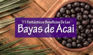 ¿Conocías Los Beneficios De Las Bayas De Acai?