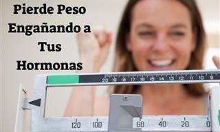 Engaña a Tus Hormonas Con Estos Consejos Para Perder Peso
