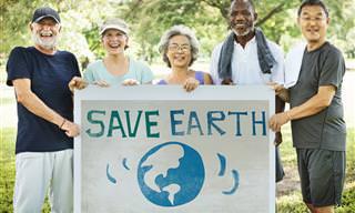 Estas 5 Soluciones Al Calentamiento Global Dependen De Ti