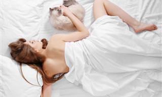 10 Razones Para Dormir Desnudos