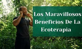 Conoce Los Grandes Beneficios Para La Salud De La Ecoterapia