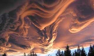 Las Ilusiones Ópticas De La Naturaleza