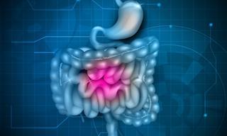 Al Parecer Los Probióticos Solo Ayudan Con Ciertos Problemas Digestivos